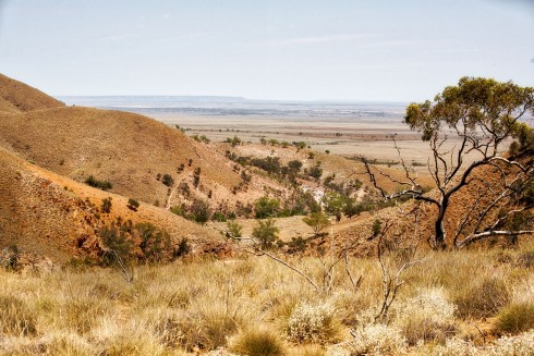 Looking from the Heysen Trail southwest over Emeroo Station - photo by Tim Froling