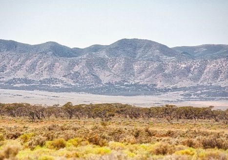 Flinders Ranges - photo by Tim Froling